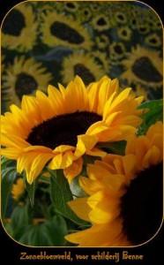 zonnebloem en schilderij Benne-001