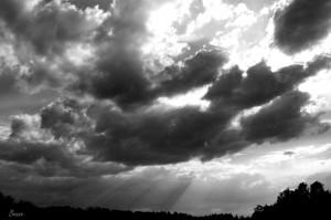 wolken zw w
